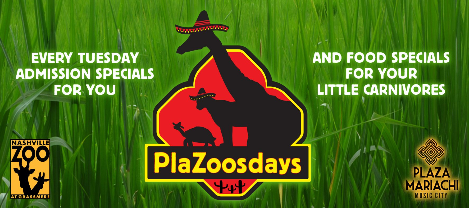 Plazoosdays Specials